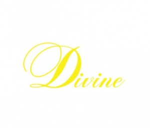 Салон красоты DIVINE - (ИП Авраменко)